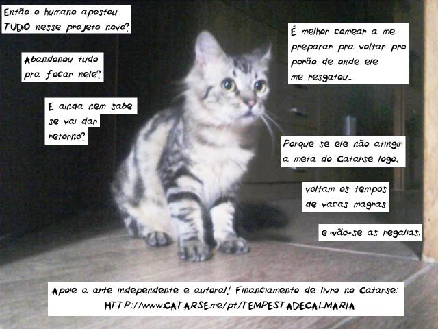 motivo pra contribuir: não odiar gatinhos