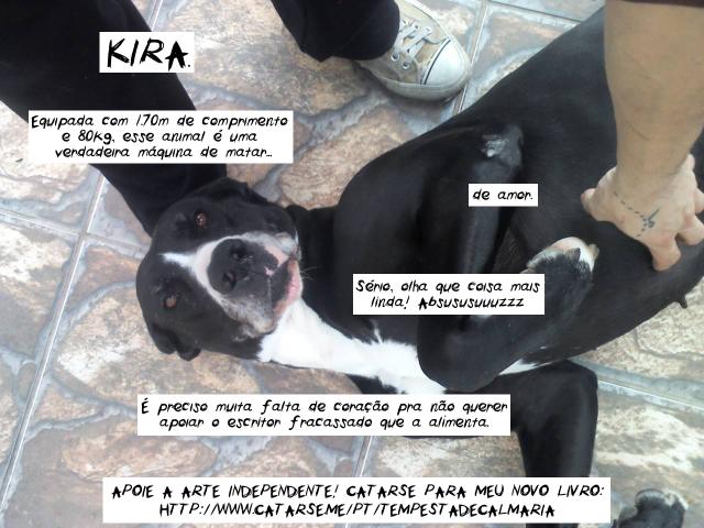 foto da minha cachorro implorando pra ajudarem no financiamento de meu livro